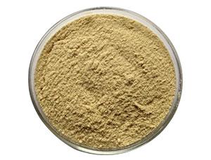 Cassia tora gum Powder